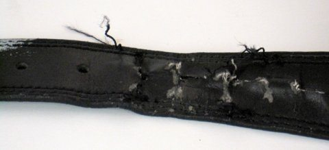 After One Year of Use the Leather Belt is Torn Up compared to a Flawless BioThane Super Belt (2)